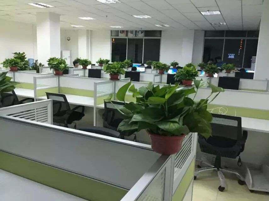 办公室实景